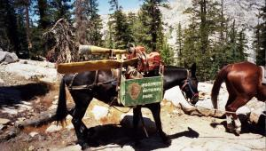 Yosemite maintenance on the Pacific Crest Trail
